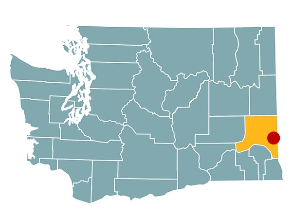 Image of Washington state with a dot on pullman