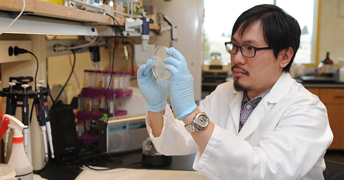 PhD candidate Shao Lu working in his laboratory.